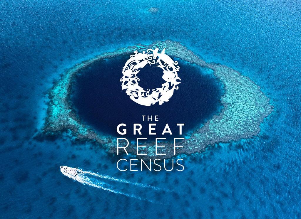 Kickstart the Great Reef Census